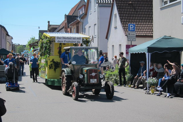 Sommertagszug Friedrichsfeld