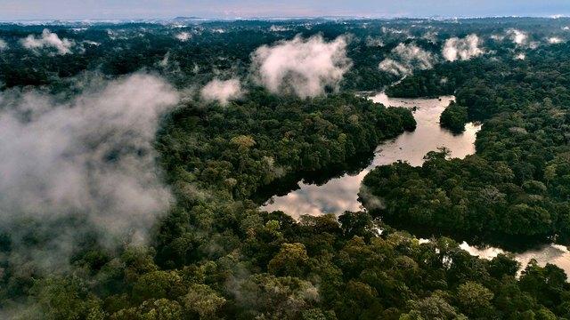 Der Amazonas: Blick einer Drohne