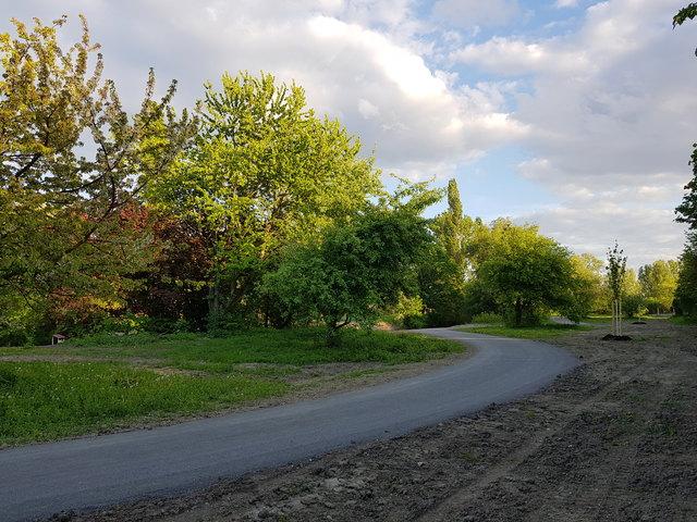 Hier und da bereits ein neuer Baum und ein Weg.
