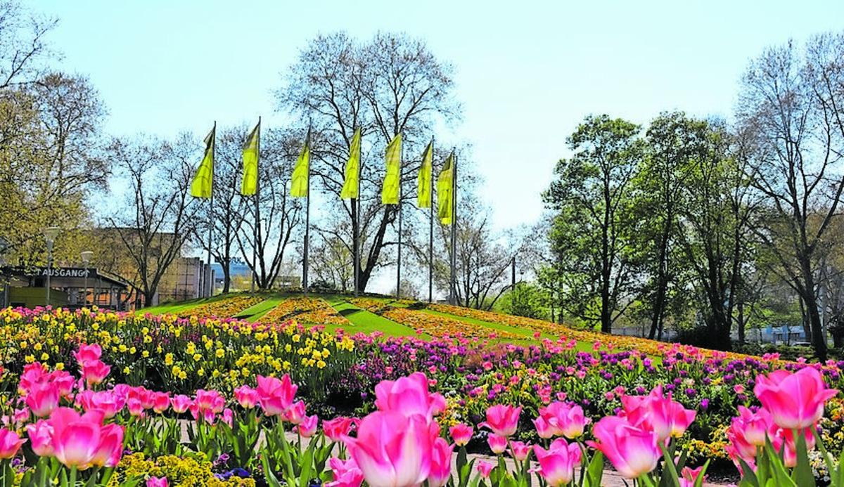 Der Luisenpark ist Oase für Auge und Seele.