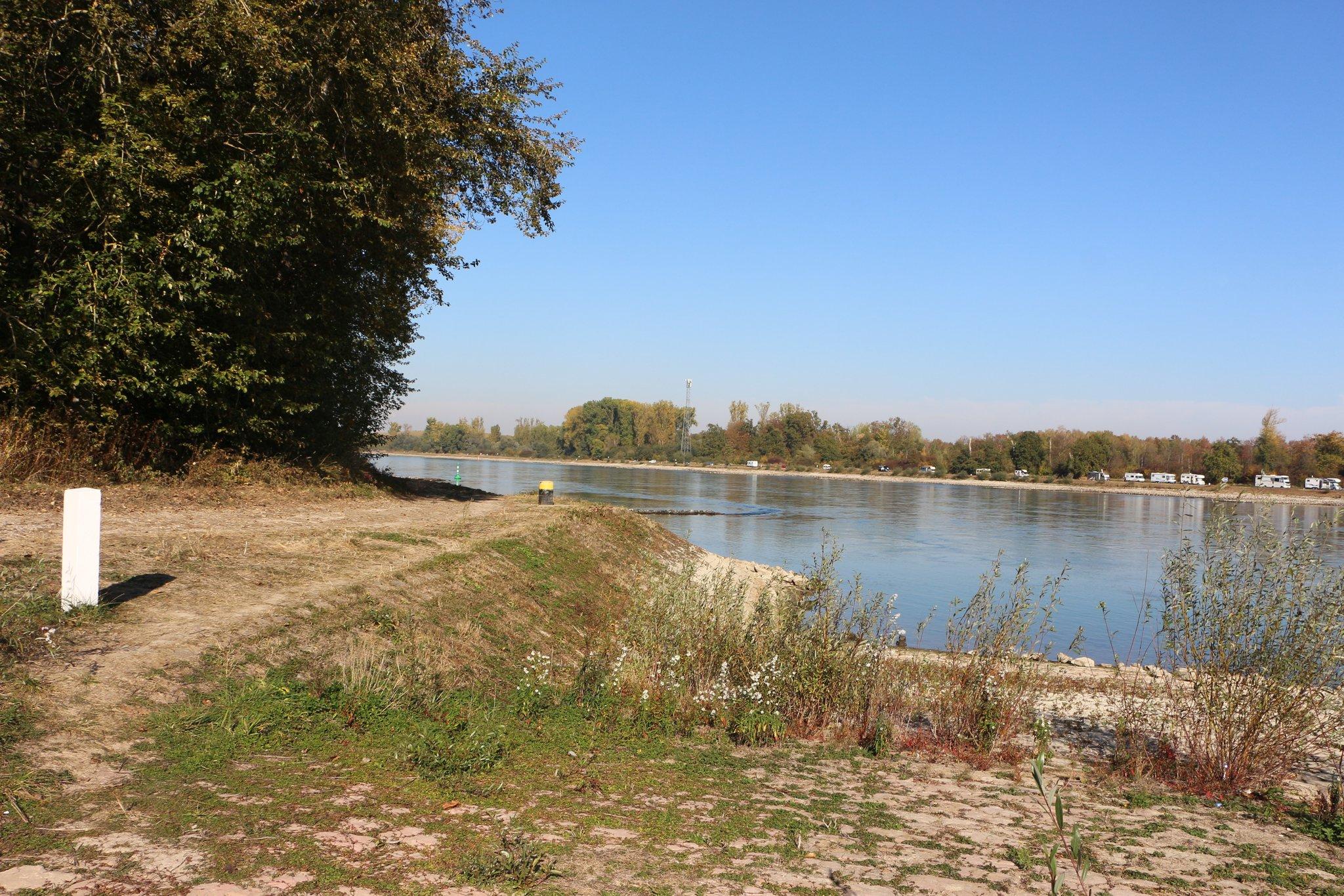 Niedrigwasser auf historischem Tiefstand: Fähre in Leimersheim hat ...