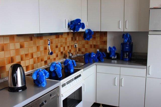 Neue Küche für das Kinderhaus BLAUER ELEFANT: Endspurt bei ...