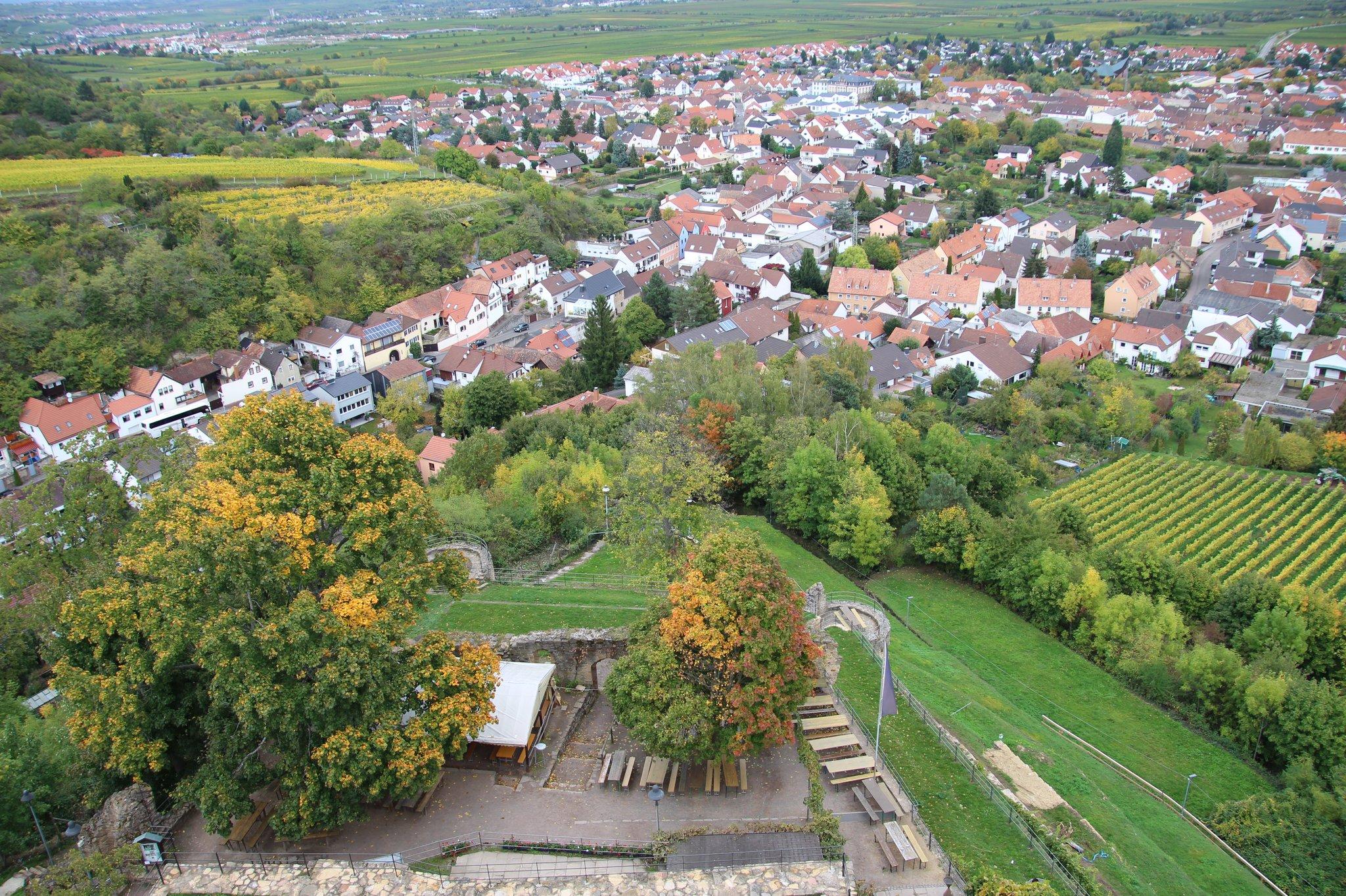 Manz Wachenheim