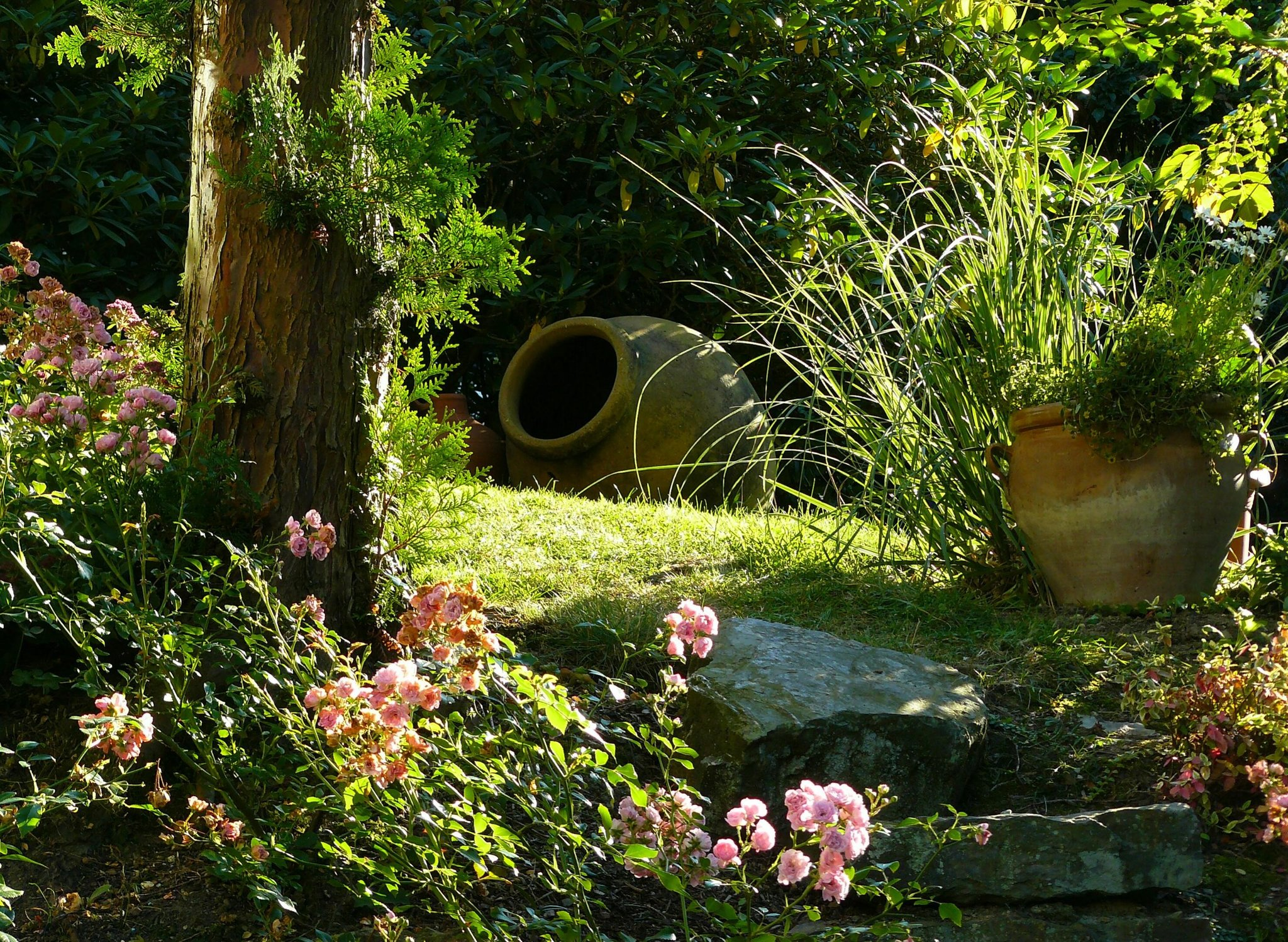Einmal durch den mediterranen garten botanische f hrung for Romantische gartendeko