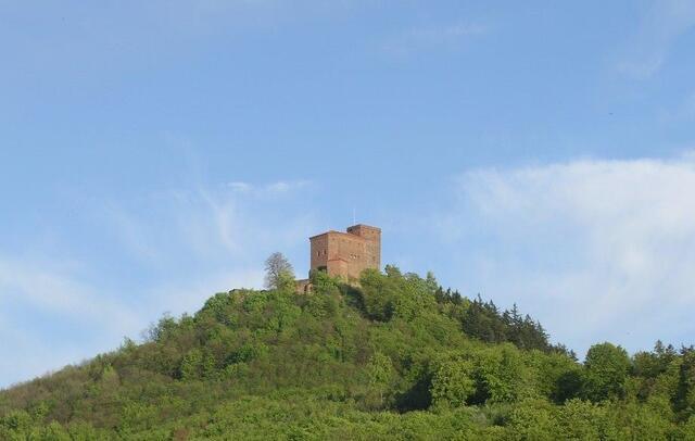 Wandern in der Pfalz - cover