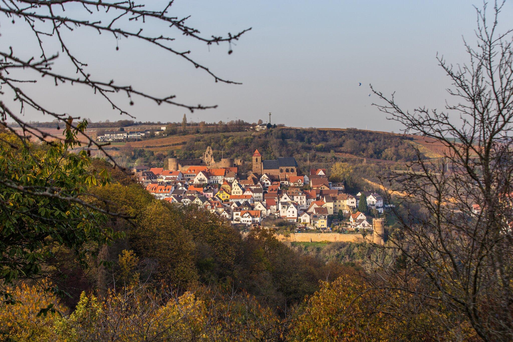 Meine-Wohlf-hlorte-in-der-Pfalz